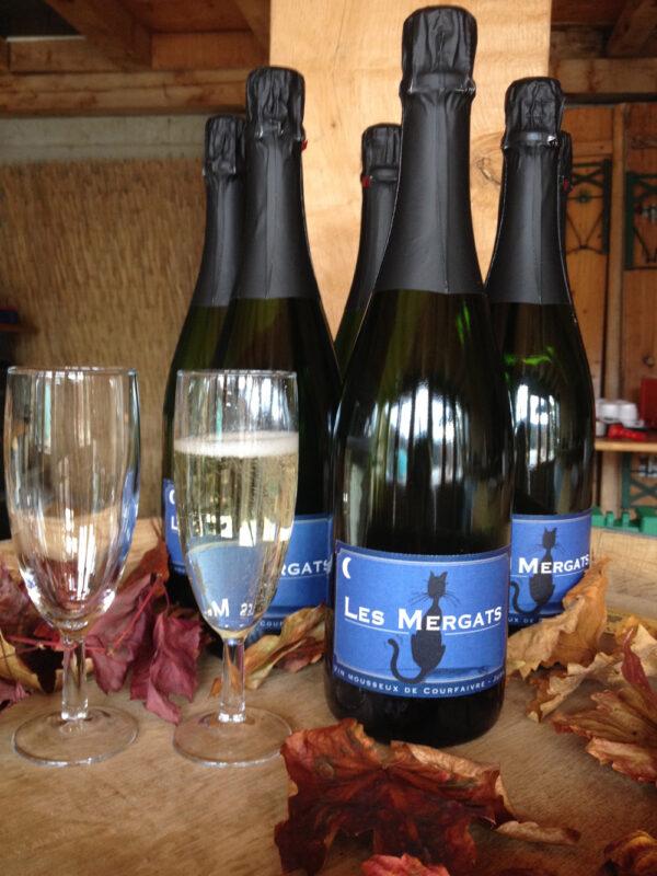 vin-mousseuximg_0688